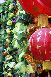 Red lantern and green leaves - Copyright (C) 2008 Yves Roumazeilles