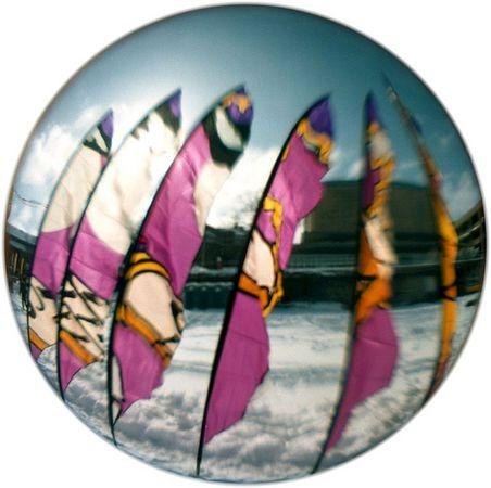 Fish eye image