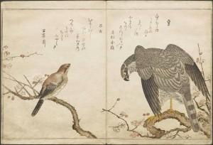 Ukiyo-e books by Kitagawa Utamaro