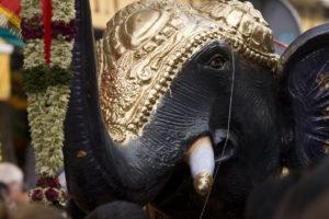 _DSC3105w Ganesh