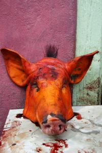 _DSC5381w - Tête de cochon