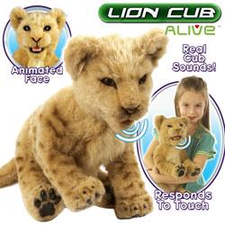 Un lion sans aller en Afrique