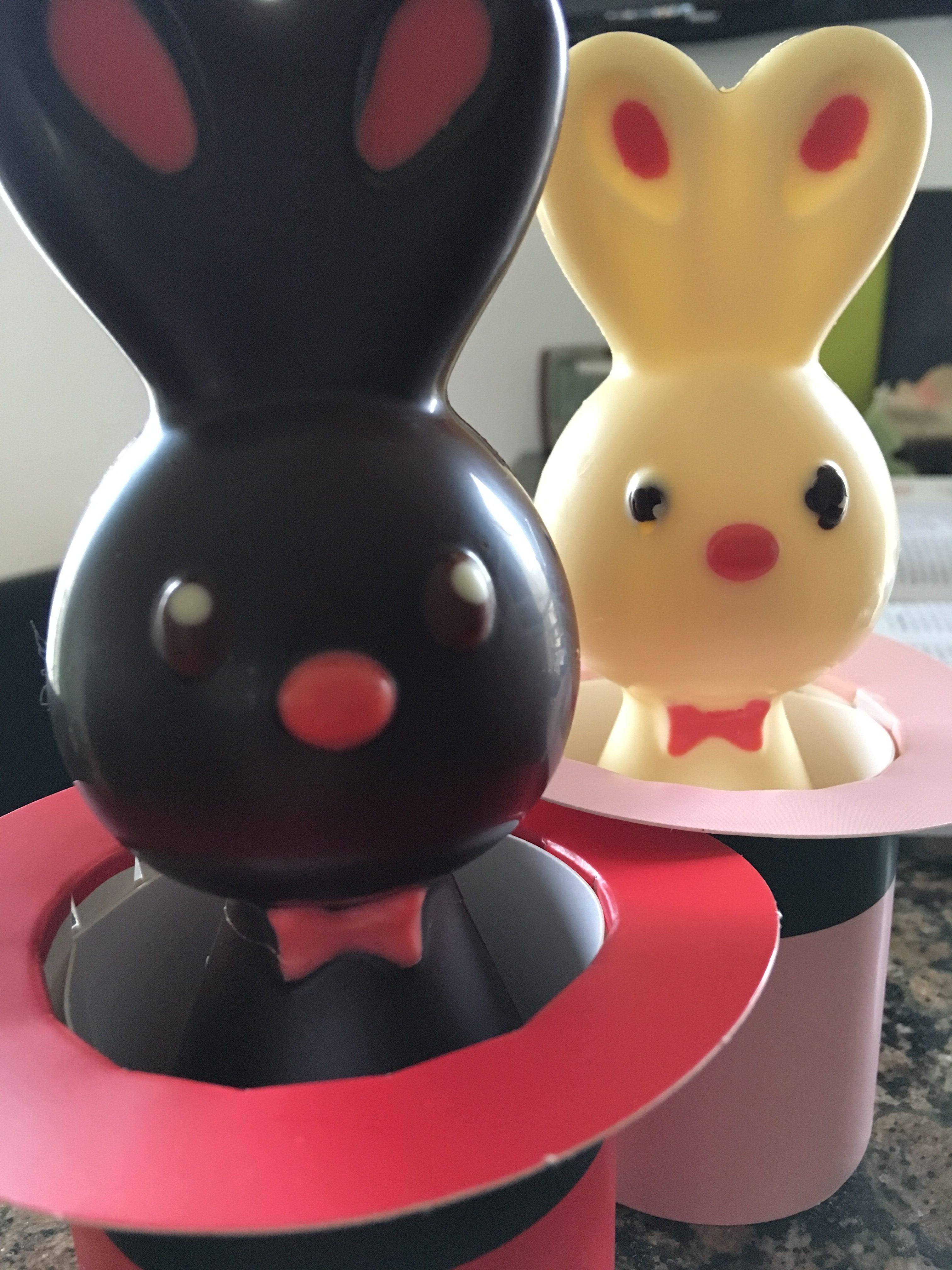 Adorable lapins à Bruges