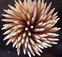 Spiral by Martin Sweeney